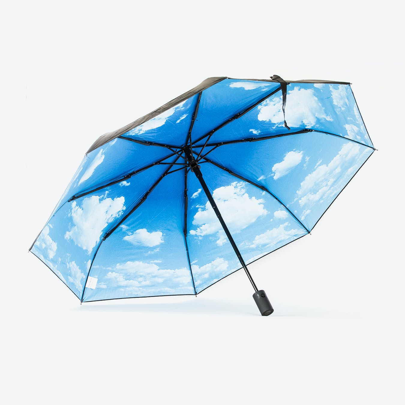 Sky Lake Print Umbrella