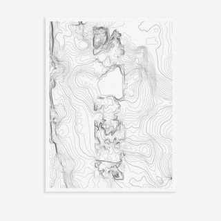 Central Park Topography Canvas Map Art