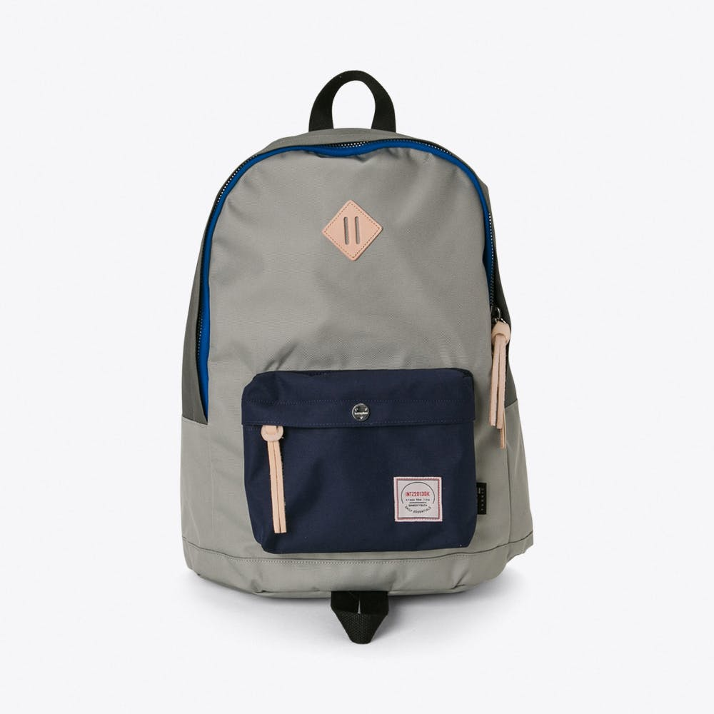 Chameleon Backpack in Grey and Navy