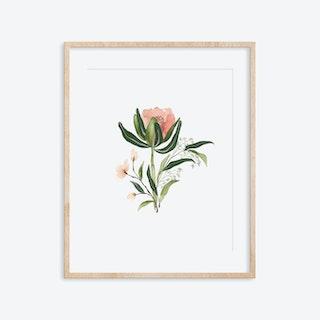 Blooming ArtPrint