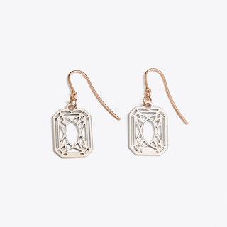 Radiant Earrings in Silver