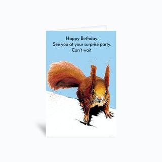 Surprise Squirrel Greetings Card
