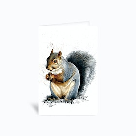 The Grey Squirrel Greetings Card