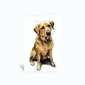 Daisy The Labrador Greetings Card