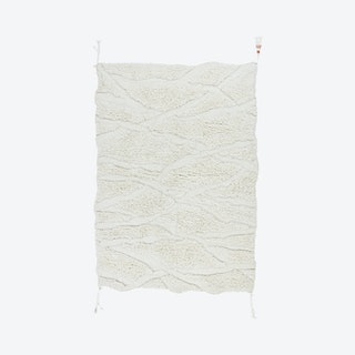 Enkang Braid Area Rug - Ivory