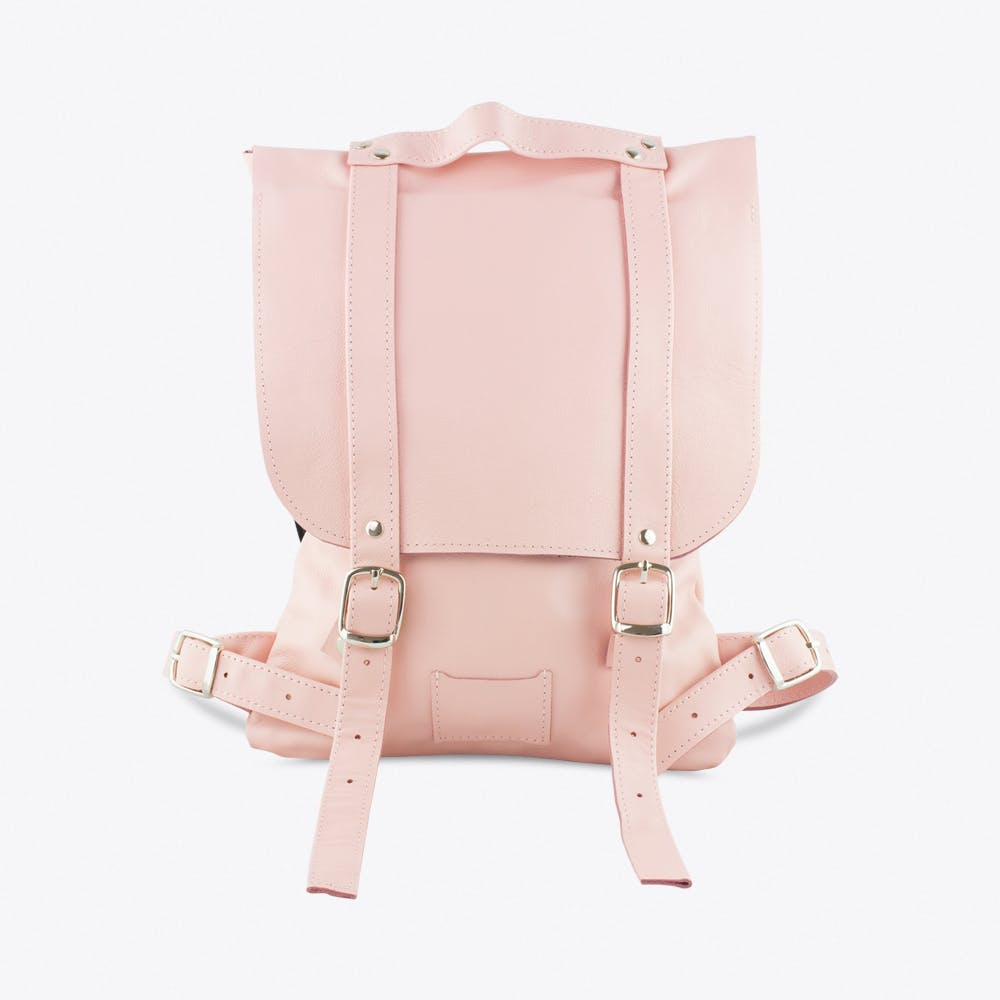 Small Backpack in Powder Pink