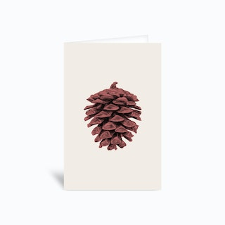 Red Pine Cone Greetings Card
