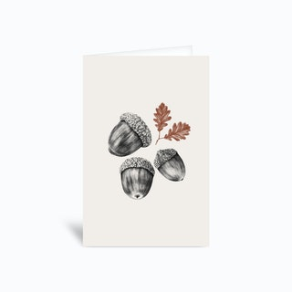 Acorns Greetings Card