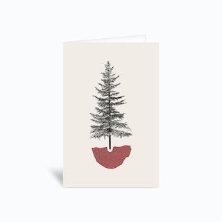 Fir Pine Greetings Card