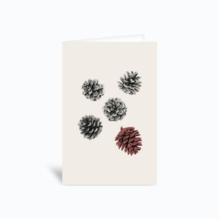 Pine Cones Greetings Card
