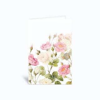 Summer Redoute Vintage Roses Garden Greetings Card