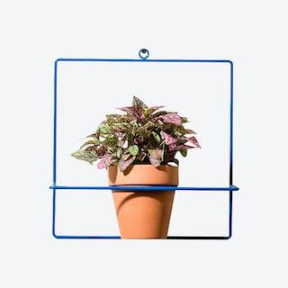 Square Wall Planter - Blue