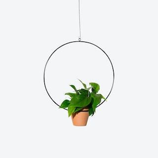Circle Hanging Planter - Black