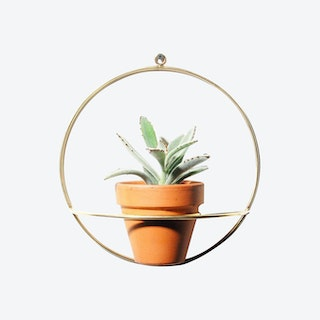 Circle Wall Planter - Brass