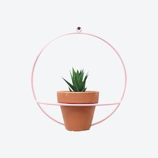 Circle Wall Planter - Pink