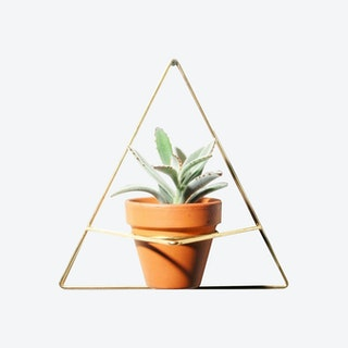 Triangle Wall Planter - Brass