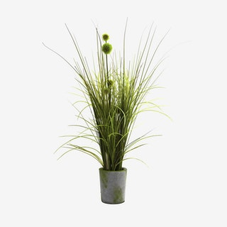 Grass and Dandelion with Planter - Green