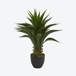 Agave Artificial Plant - Green
