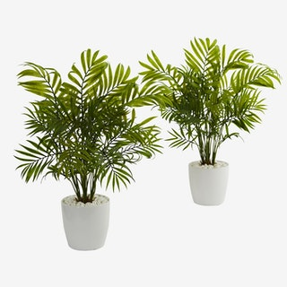 Palms in Planters - Green - Set of 2