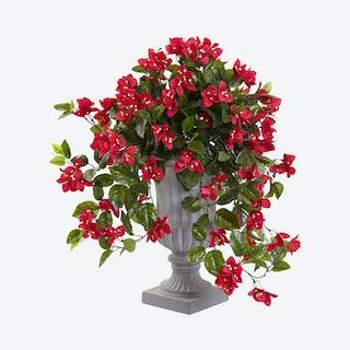 Indoor / Outdoor UV Resistant Bougainvillea with Urn - Red