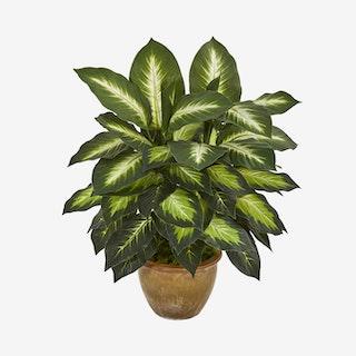 Dieffenbachia Artificial Plant in Planter - Green