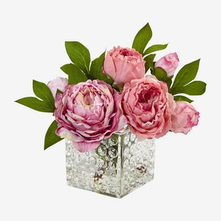 Peony in Vase - Pink