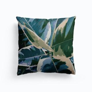 Ficus Elastica 1 Canvas Cushion
