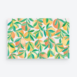 Fruit Grove Placemats - Paper - Set of 24