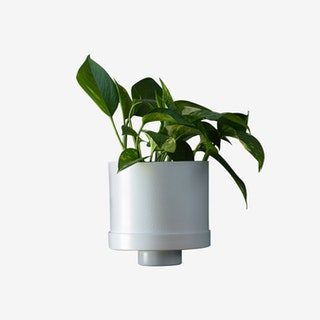 Self Watering Cylinder Planter