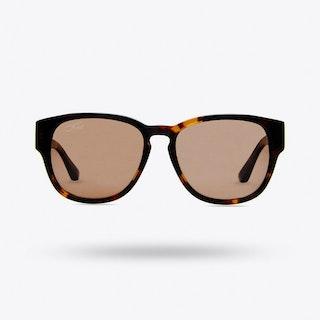 Buddha Sunglasses in Tortoise