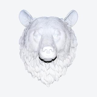 Faux Bear Wall Mount - White