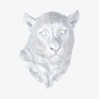 Faux Mountain Lion Mount - Silver