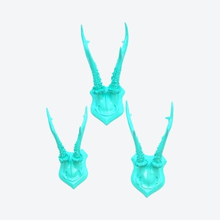 Faux Roe Deer Shield Antlers - Aqua - Set of 3