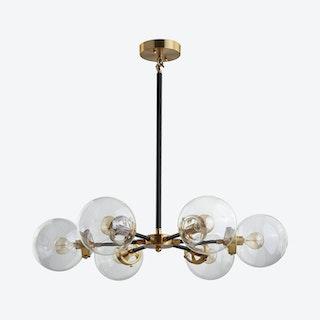Caleb 6-Light Cluster Pendant Lamp - Black / Brass Gold - Metal / Glass