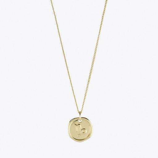 Capricorn Zodiac Symbol Charm Necklace in Gold
