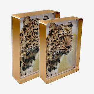 Prestige Magnet Frames - Copper - Acrylic - Set of 2