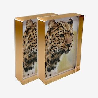 Prestige Magnet Frames - Copper - Set of 2
