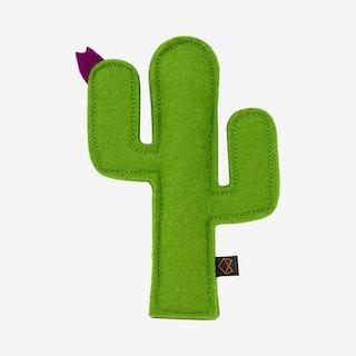 Kitty Cactus - Green