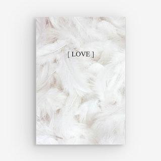 Soft Peony Canvas Prints - Feathers