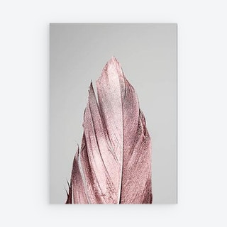 Amor Rose Canvas Prints - Single Feather