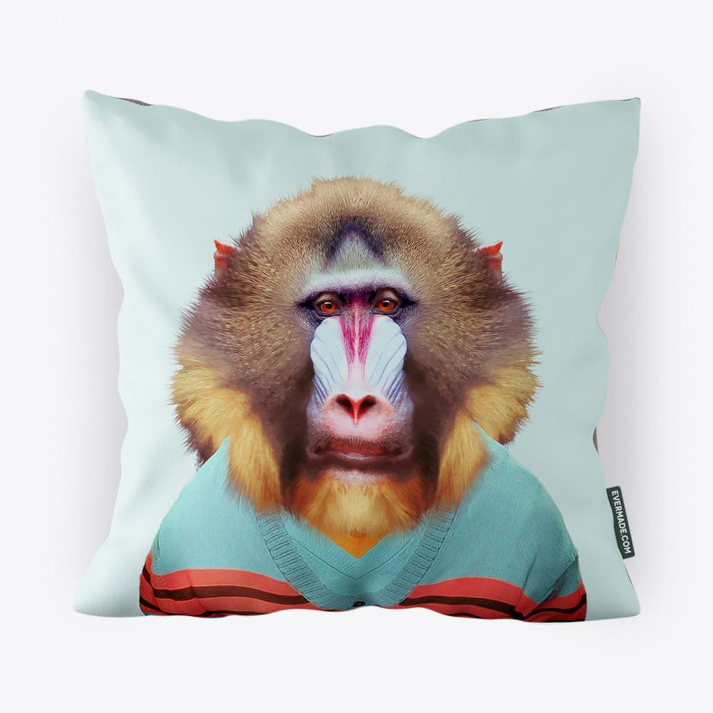 Mandrill Cushion