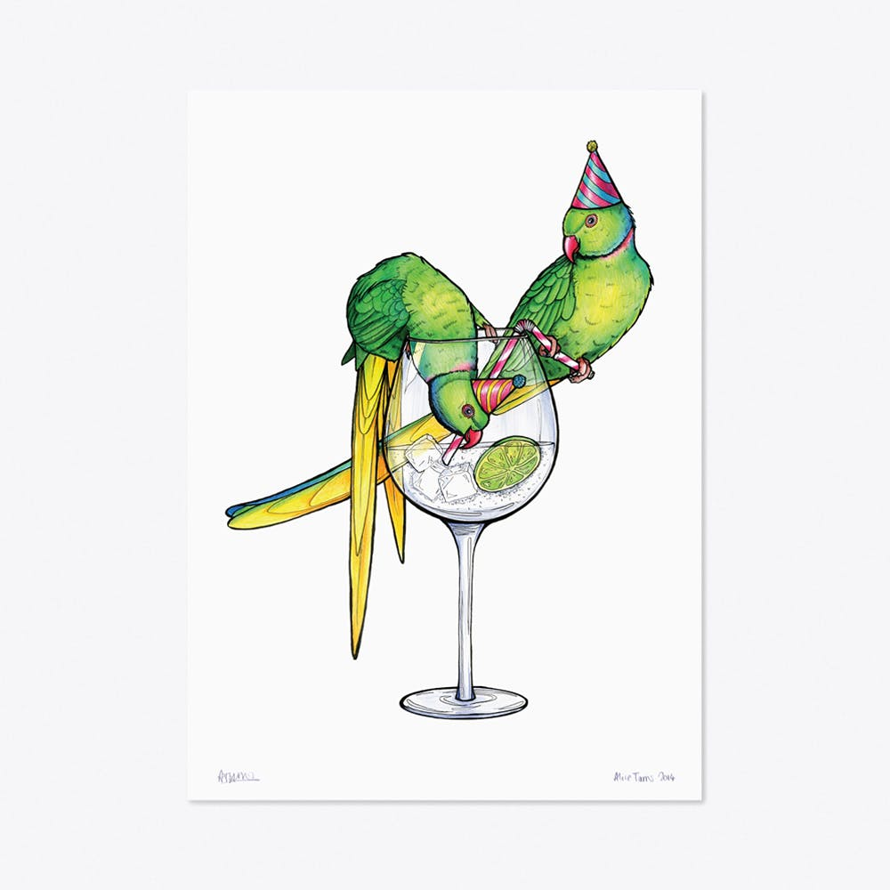 Parakeets in Party Hats A3 Print