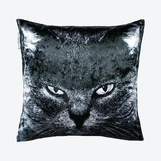 Barnie Square Pillow Cover - Dark Grey