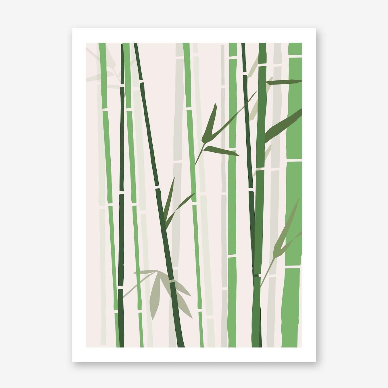 Bamboo Rainbow Green