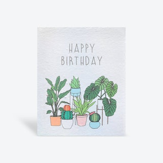 Plantable 'Happy Birthday Plant Lady' Greeting Card - Biodegradable Seed Paper