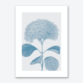 Flower No.1 Art Print