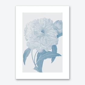 Flower No.3 Art Print