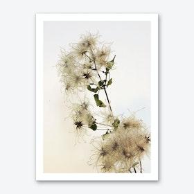 Florales · Plant End 9 Art Print