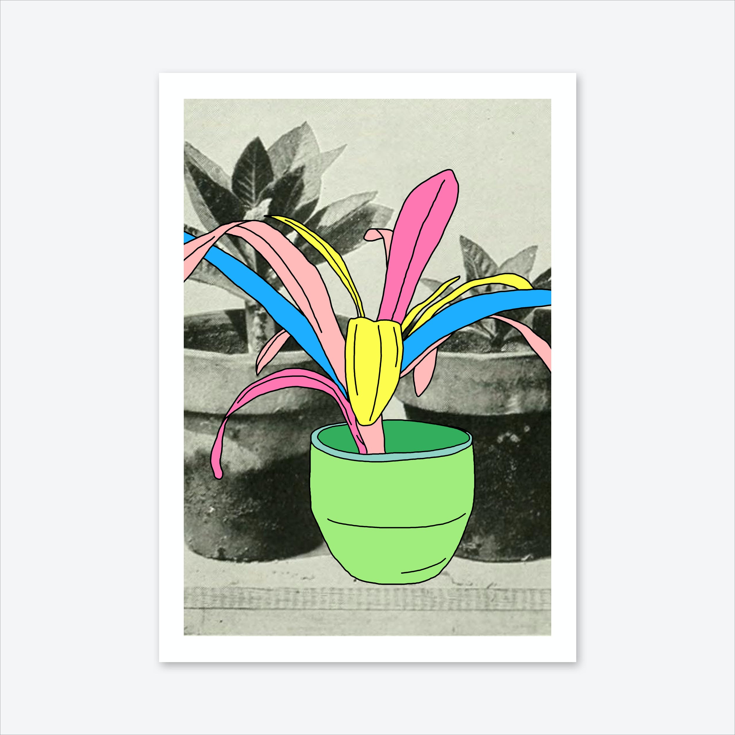 Standing Out Print