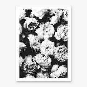 Peonies2 Art Print
